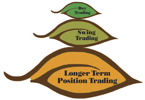Sam seiden identifying swing trading opportunities in the forex market